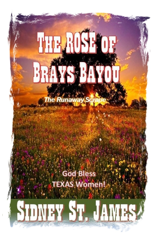 Front Cover in JPEG for Rose of Brays Bayou 2nd Edition 2017